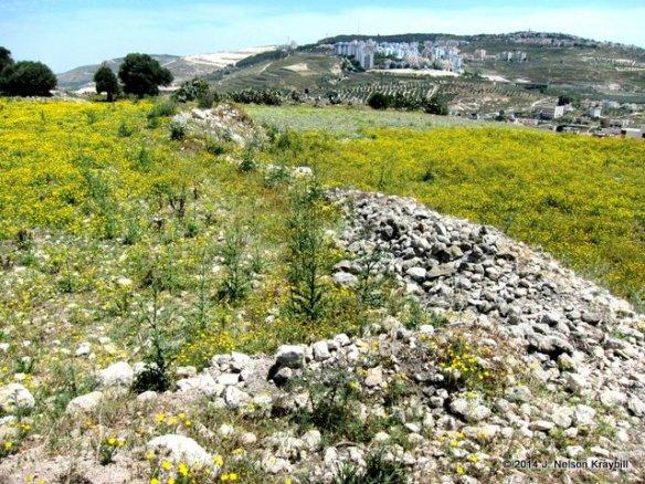 Tel Gath-hepher (Jonah's hometown)