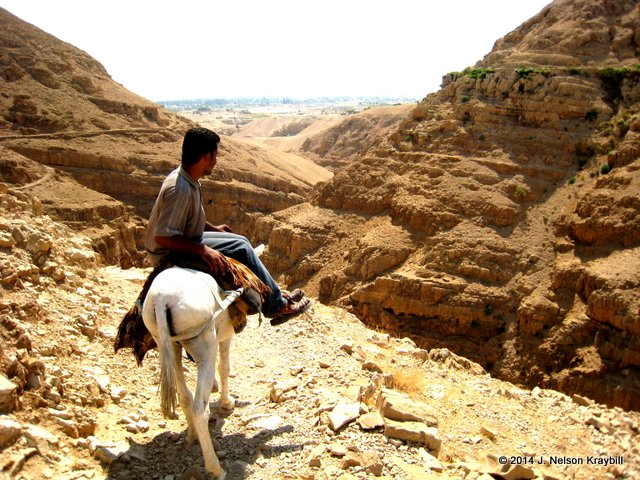 Israel, Wadi Kelt, young man on donkey going from St George to Jericho-12