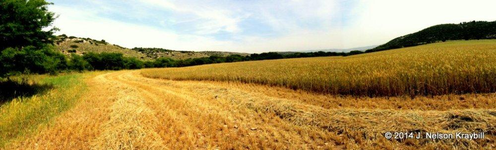 Elah Valley, looking East