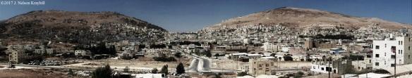 Shechem--JNK